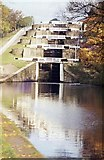 SE1039 : Autumn at the foot of Bingley Five-Rise Locks by M J Richardson