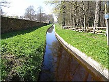 NY9875 : Whittledean Watercourse at Hallington by Oliver Dixon