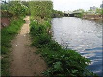 SJ8297 : River Irwell by Chris Wimbush