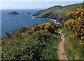 SX9150 : Coast path approaching Pudcombe Cove by Derek Harper