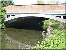 TR1558 : Bridge over the Great Stour by pam fray