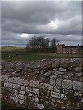 NY6166 : At Birdoswald Roman Fort, Hadrian's Wall by Darrin Antrobus