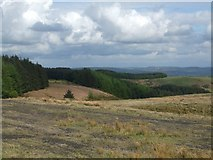 ST0489 : Countryside south of Trehafod by Mike Kohnstamm
