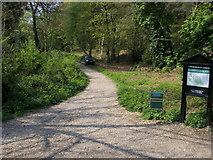 TQ2687 : Hampstead Heath by Shaun Ferguson