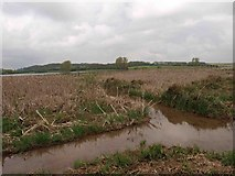 SK8805 : The view from the Waterscrape bird hide by Steve  Fareham