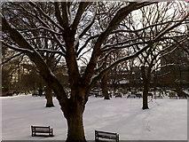 TQ3282 : Bunhill Fields in Winter by Faye-Marie
