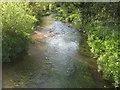TQ5572 : River Darenth to Dartford by David Anstiss
