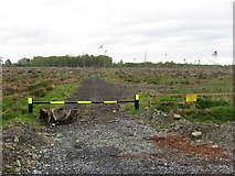 N8077 : Clear-felled forest at Oristown, Co. Meath by Kieran Campbell