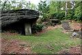SE0839 : Lady Blantyre's Rock by Mark Anderson