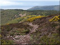 SS9043 : Path on Easter Hill by Derek Harper