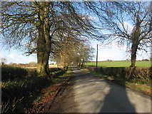 O0960 : Beshellstown, Co. Meath by Kieran Campbell