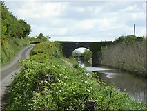 N5449 : Footy's Bridge on the Royal Canal, Co. Westmeath by JP
