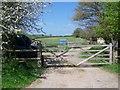 ST8352 : Footpath, Bokerswood by Maigheach-gheal