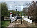 SY2592 : Car crosses the Seaton tramway at Colyford by Sarah Charlesworth