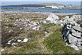 L9622 : Caorán na gCeac Theas (Keeraunnagark South) by Graham Horn