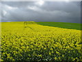 SK4967 : Crops change and storm clouds approach by Alan Heardman