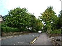 SE2955 : Brunswick Drive by DS Pugh