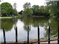 TQ4886 : The Fishing Lake,Valence Park by Geographer