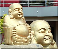 J3372 : Buddha statues, Belfast by Albert Bridge