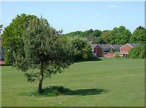 SO9095 : Recreational area in Penn, Wolverhampton by Roger  Kidd