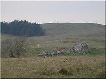 NY9398 : Another ruinous bastle near High Shaw Farm by Rodney Clark