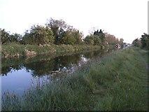 N9930 : Grand Canal Near Hazelhatch, Co. Dublin by JP