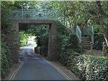 SX9364 : Footbridge, Anstey's Cove Road by Derek Harper
