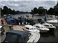 SU8987 : Bourne End Marina by Shaun Ferguson