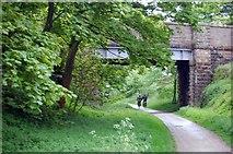SK1460 : Tissington Trail, Bridge near Heathcote by Trevor Harris