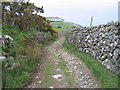 SH5910 : Steep track above Llwyngwril by E Gammie