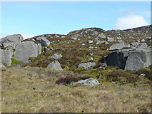 NN9866 : Boulderfield on Creag Chlacharnach by Russel Wills