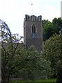 TM3569 : St.Michael's Church Tower, Peasenhall by Adrian Cable