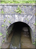 SD8432 : Culvert beneath the Leeds Liverpool Canal by Robert Wade