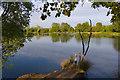 SE7829 : Eastrington fishing pond by Paul Harrop