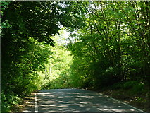 TQ2652 : Wray Lane, Reigate Hill by Peter Trimming