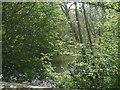 SO2798 : River Camlad upstream at Whittery Bridge by John M