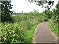 NS6262 : Clyde Walkway near Dalmarnock by Richard Webb