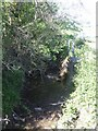 SO2090 : River Caebrita near Sarn by John M