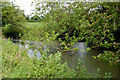 TF7118 : A pond west of Gayton by Andy F