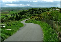 J4772 : Path to Scrabo by Rossographer