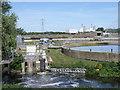 TL2298 : Flag Fen Sewage Farm by Michael Trolove