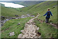 NY1907 : Well managed path descending to Lingmell Gill by N Chadwick