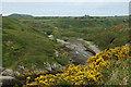 SM7424 : Porthclais from the Pembroke Coastal Path by Row17