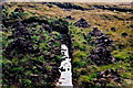 B8332 : Gweedore area - Peat cutting off R257 by Joseph Mischyshyn
