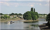 TQ1977 : Kew Railway Bridge – partly hidden by Oliver's Island by Chris Reynolds