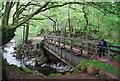 NY1700 : Old Railway bridge across the River Esk by N Chadwick