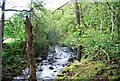 NY1800 : The River Esk by N Chadwick