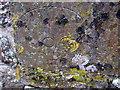 SM9202 : Pwllcrochan church: skull on tombstone by ceridwen