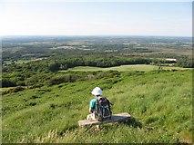 SY9282 : View from Creech Barrow by John Palmer