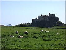 NU1341 : Lindisfarne Castle and Bamburgh Castle by John Tustin